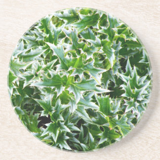 Spiked Leaves Texture Coaster - Green