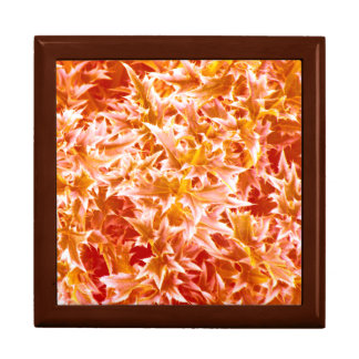 Spiked Leaves Texture Gift Box - Orange