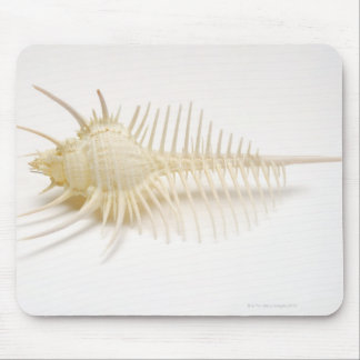 Spiked Murex shell Mouse Pad