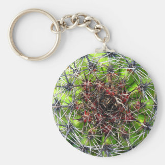 Spikes, Thorns and Needles Plant, Close Up Basic Round Button Keychain