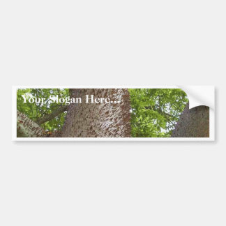 Spikes Trees Leaves Bumper Sticker