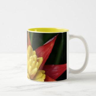 Spiky Flower mug