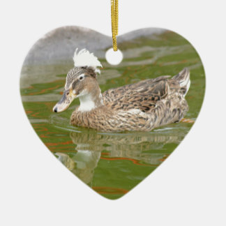 Spiky haired duck ceramic ornament