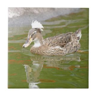 Spiky haired duck ceramic tile