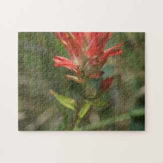 Spiky Red Wildflower Puzzle