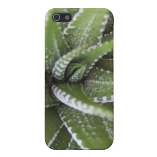 Spiky Succulent- Iphone series 4 case Case For iPhone 5