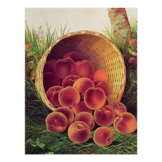 Spilled Peaches Poster