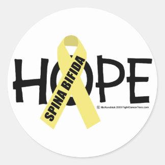 Spina Bifida Hope Classic Round Sticker