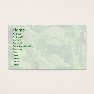 Spinach and raindrops business card