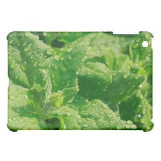 Spinach and raindrops iPad mini case