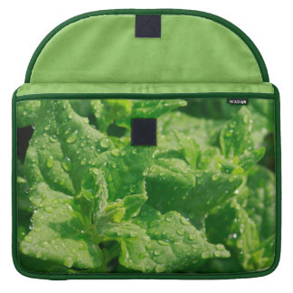 Spinach and raindrops MacBook pro sleeve