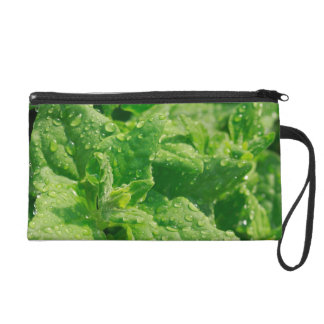 Spinach and raindrops wristlet