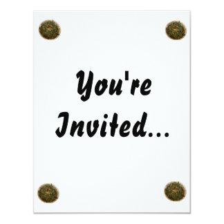 spinach dip photo design image invitations