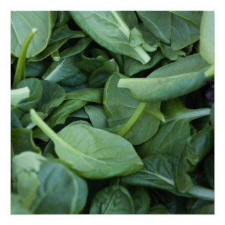 Spinach Leaves Print