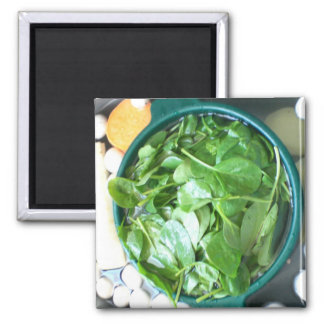 Spinach Magnet