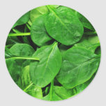Spinach Round Stickers
