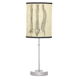 Spinal Column and Vertebrae Anatomy Desk Lamp