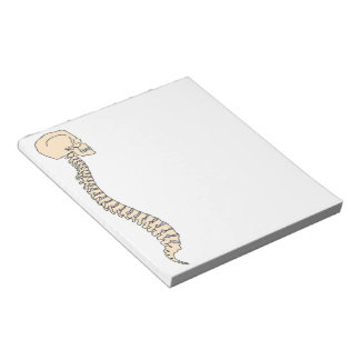 SPINAL COLUMN NOTE PADS