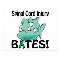 Spinal Cord Injury BITES Postcard