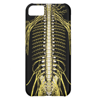 Spinal Nerves Anatomy Image Chiropractic iPhone 5C Case
