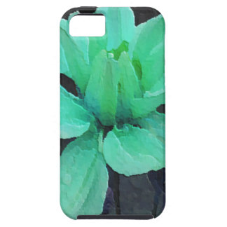 spinderok - pale green dahlia iPhone SE/5/5s case