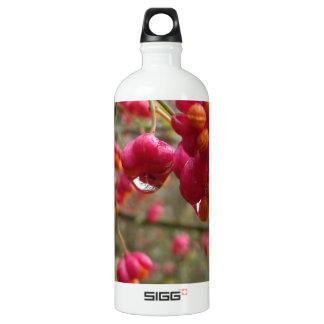 Spindle Fruit And Rain Drops SIGG Traveler 1.0L Water Bottle