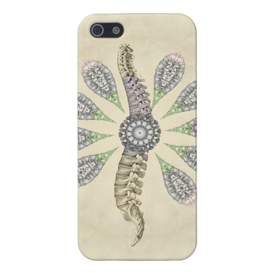 Spine Anatomy Chiropractic Cover For iPhone SE/5/5s