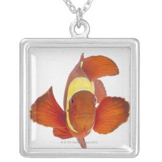 Spine-cheek anemonefish (Premnas biaculeatus) Square Pendant Necklace