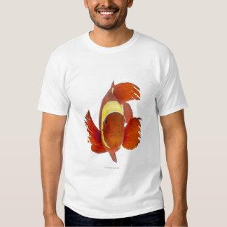 Spine-cheek anemonefish (Premnas biaculeatus) T Shirt