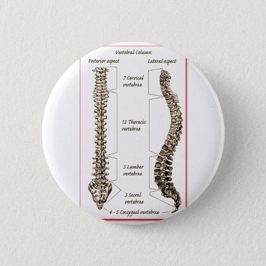 Spine Details Sepia2 Button