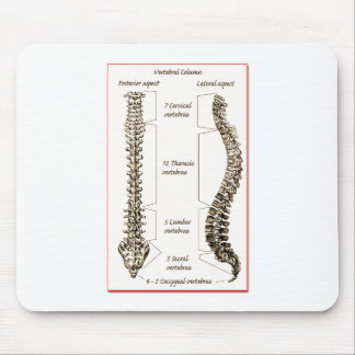 Spine Details Sepia2 Mouse Pad