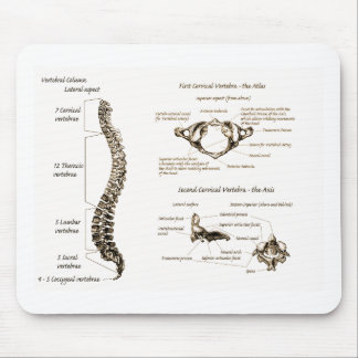 Spine Details Sepia Mousepad