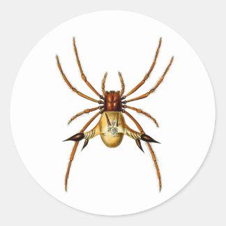 Spined Spider Classic Round Sticker