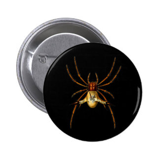 Spined Spider Pinback Buttons