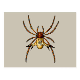 Spined Spiders Postcard