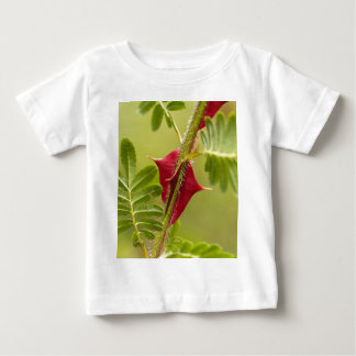 Spines of Rosa omeiensis. Baby T-Shirt