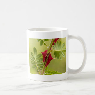 Spines of Rosa omeiensis. Coffee Mug