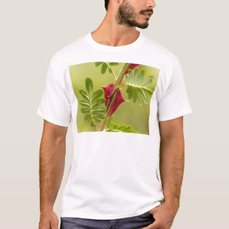 Spines of Rosa omeiensis. T-Shirt