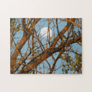 Sping Moon - Kansas Jigsaw Puzzle