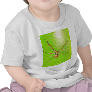 Spinne auf Blatt T Shirt