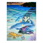 spinner dolphins post card