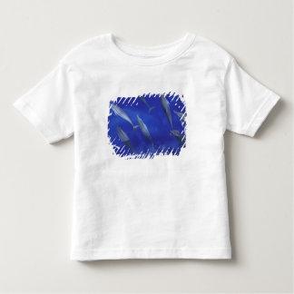 Spinner dolpins Stenella longirostris) Tee Shirt