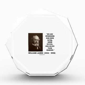 Spinning Our Own Fates Good Or Evil James Quote Acrylic Award