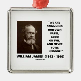 Spinning Our Own Fates Good Or Evil James Quote Metal Ornament