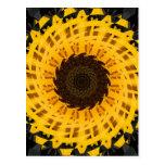 Spinning Sunflower Postcard