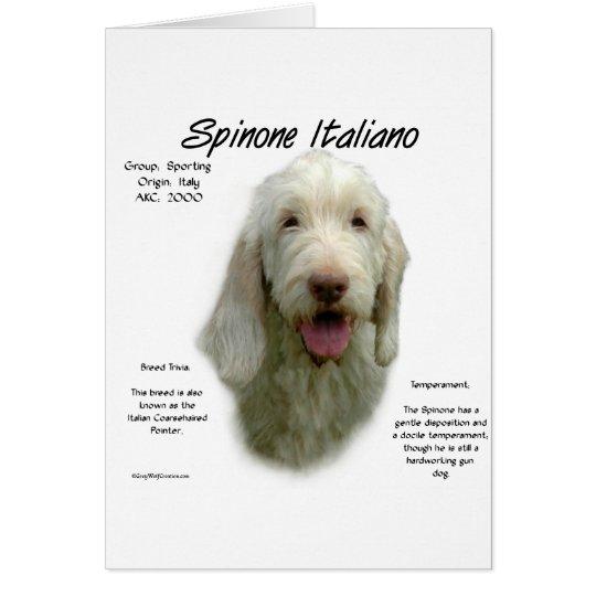 Spinone Italiano History Design Card