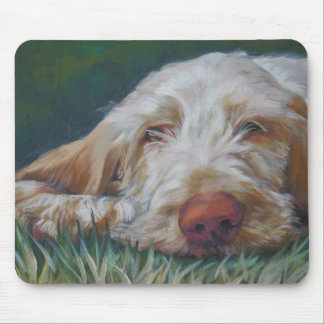 Spinone Italiano mousepad