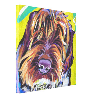 Spinone Italiano Pop Dog Art on Wrapped Canvas Stretched Canvas Prints