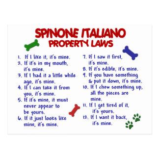 SPINONE ITALIANO Property Laws 2 Postcard