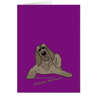 Spinone Italiano - Simply the best! Card